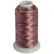 Multicolor embroidery thread